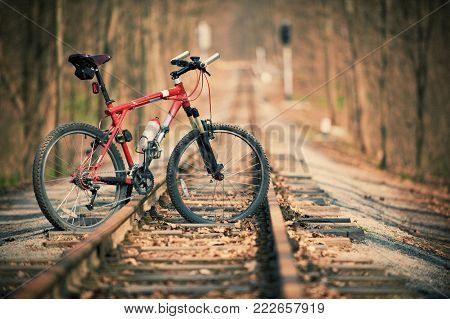 mountain bike in the forest on rails. no people.