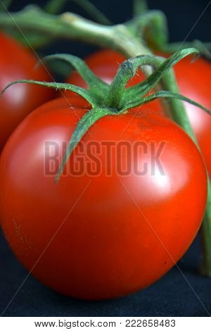 close-up of ripe risp tomatoes also called solanum lycopersicum