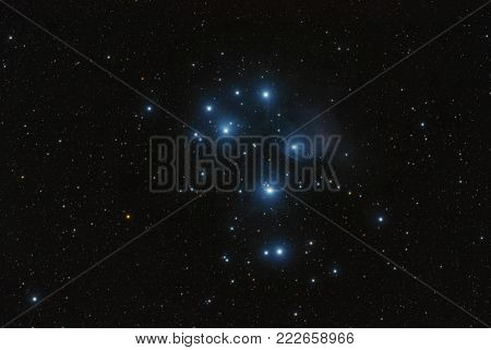 The Pleiades - the best known open cluster in the sky. They owe their popularity mainly to the fact that they can be admired even with the unaided eye. This cluster is located in the constellation of the bull and is about 444 light years away from us.
