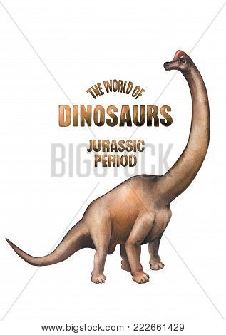 Watercolor brachiosaurus. Hand painted dinosaur isolated on white background. Herbivore animal of the prehistoric period
