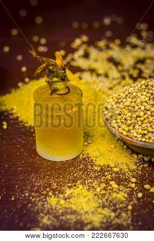 Close Up Of Spice Coriander Seeds,coriandrum Sativum With Its Extracted Oil.
