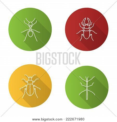 Insects flat linear long shadow icons set. Ant, stag beetle, ground bug, phasmid. Vector outline illustration