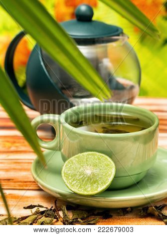 Mint Green Tea Means Cafe Herb And Refresh