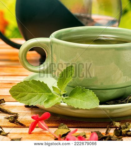Tea With Mint Means Refresh Drink And Refreshment