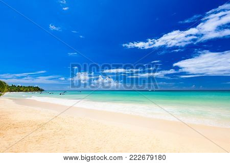 Paradise Beach Beautiful White Sand With Palm Tree In The Resort Of Caribbean
