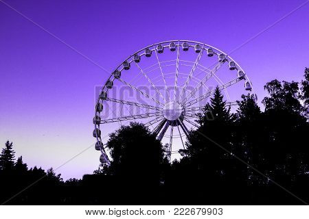 Ferris wheel in the amusement park in the background of trees with a bright sunset light (modern color of the year 18-3838)