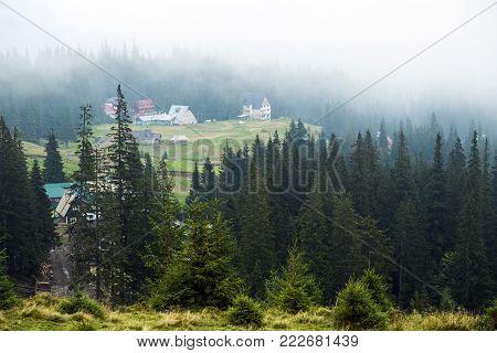 Mist descends to the polonina Dragobrat (Ukraine, Carpathians, Dragobrat)