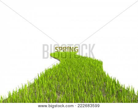 3D rendering of fresh green grass path leading to Spring word on white background