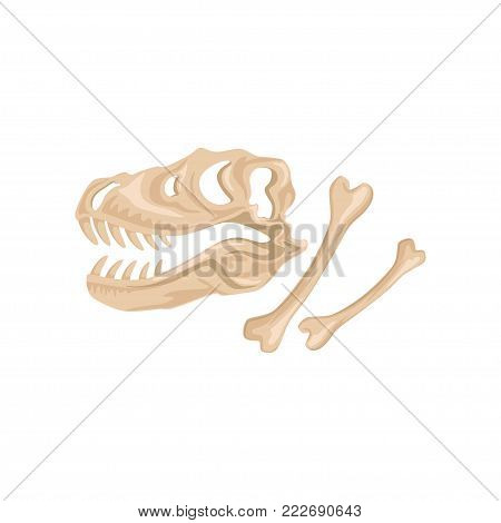 Skull and bones of Tyrannosaurus Rex. Ancient remains of dinosaur skeleton. Prehistoric reptile. Paleontology concept. Archeology icon in flat style. Cartoon vector illustration isolated on white.