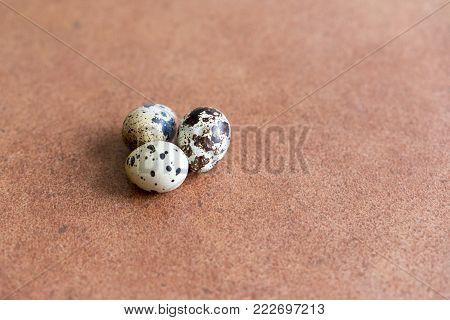 three quail eggs on a brown background