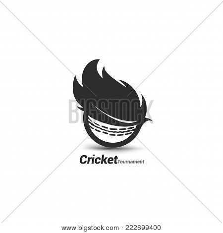 Vector cricket ball with typography for cricket tornament , logo, t-shirt and cricket championship