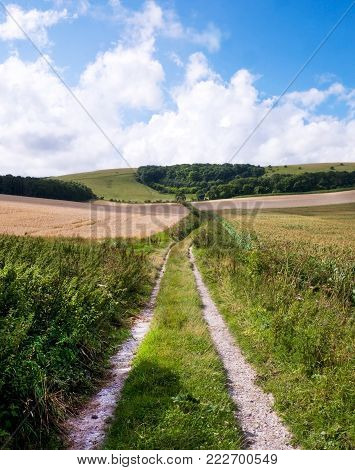 South Downs, East Sussex, UK, A rural track with grass in the middle and gravel wheel tracks, going from the foreground to the distannce into the Sussex rolling hills of wheat fields, blue sky