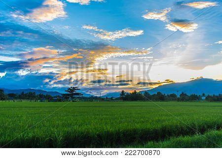 Rural area surrounding Solano, Nueva Vizcaya, Philippines