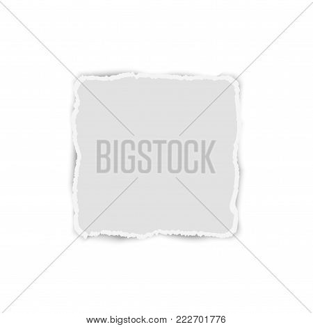 White elongate paper tear with shadow isolated. Vector.