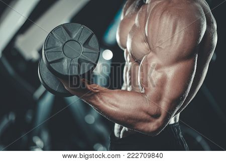 Handsome muscular Caucasian man of model appearance working out training arms in gym gaining weight pumping up muscles bicep and tricep with dumbbells and on machines fitness and bodybuilding concept