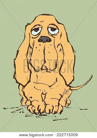 Basset hound. Sad dog character. Vector illustration
