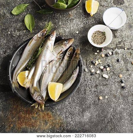 Fresh sea cold-water small fish such as smelt, sardine, anchovies on a simple background with fresh spinach, lemon slices, legumes for the concept of correct healthy natural nutrition. Top View