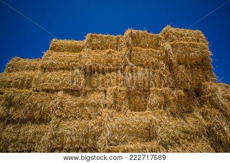 straw bales of straw
