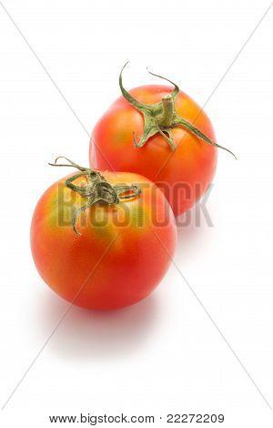 Two Immature Tomato