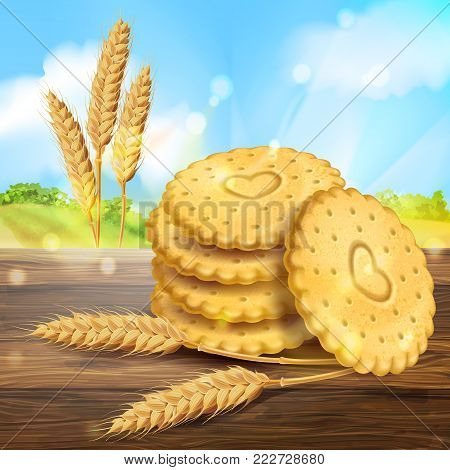 Vector realistic wheat cookies packaging ad. 3d round biscuits, crackers stack near wheat ears on wooden table on rural sky, landscape background. Sweet baked dessert food advertising design template