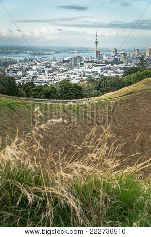 Looking over Mount Eden Crater with Auckland City and Harbour in the Background - Vertical