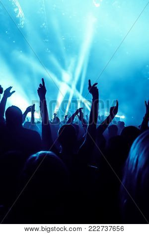concert crowd at a rock concert