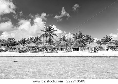 Mexico, Costa Maya - February 1, 2016: tropical beach at clear sea or ocean water with sunbeds on white sand with green palms, tourist resort with people and straw umbrellas on sunny summer blue sky