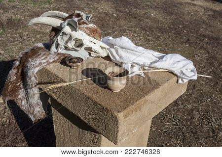 Sacred objects for ancient pagan rites. Ataecina worship depicted by goat skull