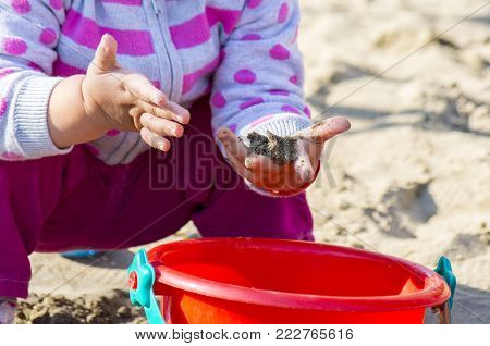 Hands Of A Little Girl With Sand