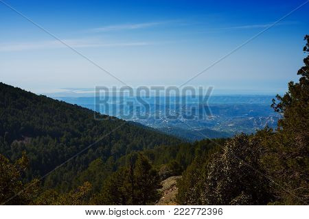 Mountain valley covered with coniferous forest, in a blue haze stretching to the horizon. A sunny day on Troodos, Cyprus. Wide angle.