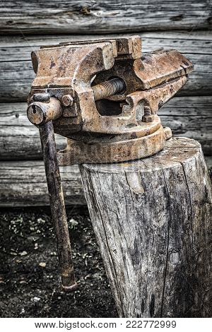Old rusty vise standing on a tree stump in the backyard.