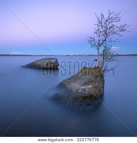 beautiful sunset on the lake with a tree growing out of the stone