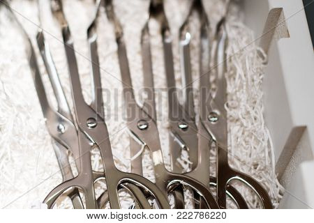 Display Cutlery Box With Cutlery On Paper Straw