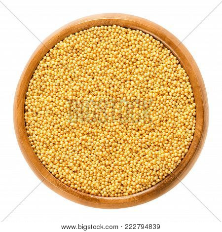 Gold nonpareils in wooden bowl. Hundreds and thousands. Decorative confectionery of tiny balls, made with sugar and starch, used for decoration. Macro food photo close up from above over white.