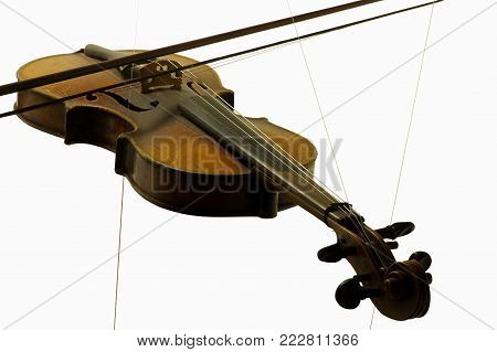 violin old string instruments music objects isolated