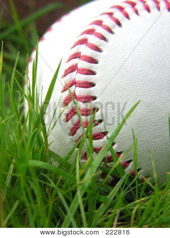 Baseball High Contrast