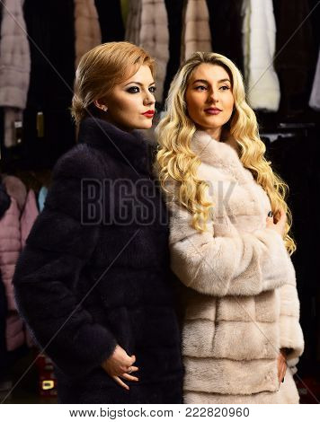 Girls with strict faces in black and white fur coats. Women with blond hair in fur coats in fur shop. Fashion and elegance concept. Women with makeup shopping in fashion store.