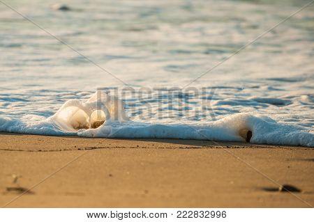 Foamy water of ocean surf splashes over rock in shape of heart.