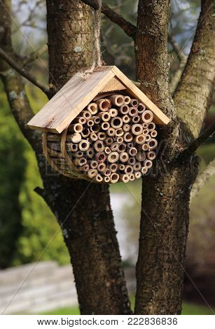 Wooden bug hotel for insects hanging in garden tree