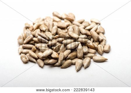 sunflower seeds. sunflower seeds on a white background.