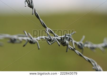 Forbidden. Do not trespass! Crossed wires on a green grass background. Abstract image by joining two crossing wires on a green field background, an aggressively symbol making you feel trapped and starving for freedom.