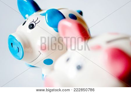 economy and finance - savings in a money box - two pink and blue piggy banks