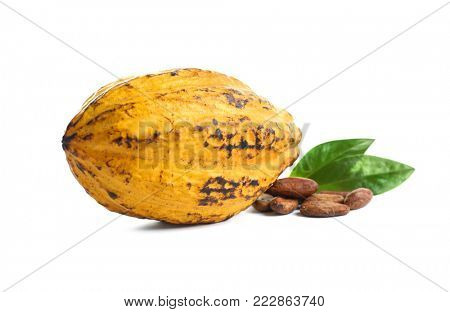 Ripe yellow cocoa pod and beans on white background