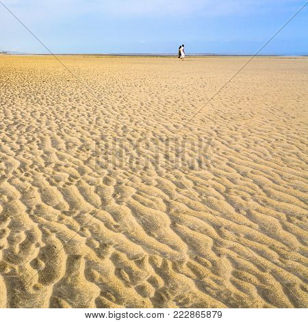 travel to France - dune on yellow sand beach Le Touquet (Le Touquet-Paris-Plage) on coast of English Channel