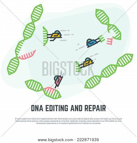 DNA editing technology. CRISPR/CAS9 manipulation with DNA broken genes. Line vector illustration. Nano bots repairing DNA concept.