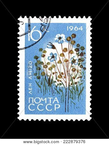 SOVIET UNION - CIRCA 1964 : Cancelled postage stamp printed by Soviet Union, that shows Flax.