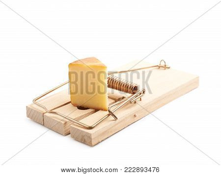 Wooden mousetrap with a piece of cheese inside, composition isolated over the white background poster