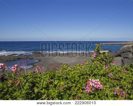 view on Playa Jardin beach in Puerto de la Cruz, Tenerife with blue sea horizon, rocks, sand and pink and green flowers with blue sky background
