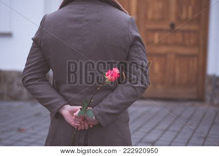 Man holding rose hiding on back at the park. Womans / Valentines Day concept.