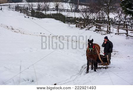 Volovets, Ukraine - December 12, 2016: transportation of manure in winter. man riding a horse sledge on snowy road along the wooden fence